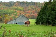 Pereaux, Nova Scotia
