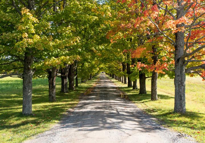 English Mountain Road - Coldbrook, Nova Scotia