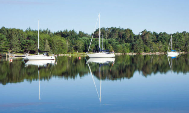 Calm Day on St. Margaret's Bay